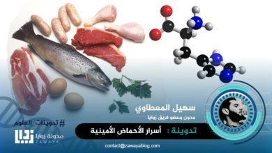 Photo of أسرار الأحماض الأمينية